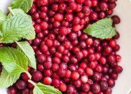 Cranberry & Mint Sea Salt Scrub