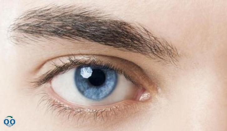 Urgences oculaires