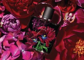 Black Tulip, a new scent for provocateurs
