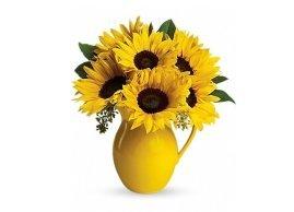 Teleflora's Sunny Day Pitcher of Sunflowers, La Grâce des Fleurs