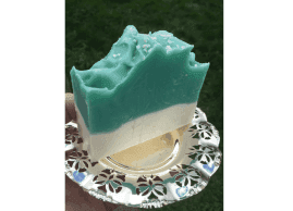 Spring Soaps - 4 Scents (Coconut Lime, Citrus, Almond & Hyacynth)